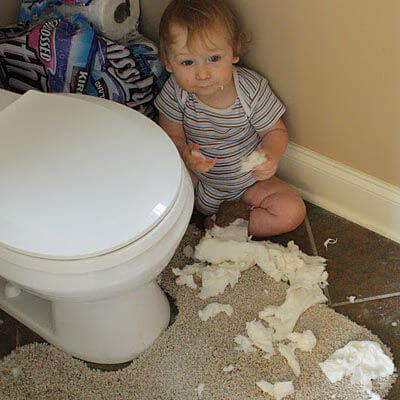 Clogged Toilet Repair Services In Tampa