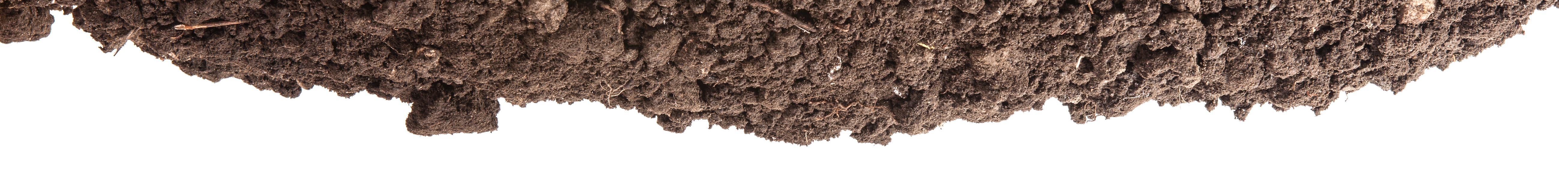 Tampa Plumbing Dirt